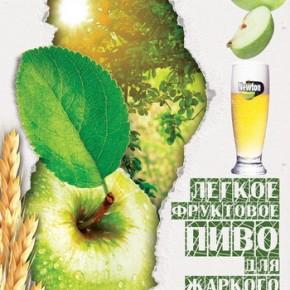 Poster_Newton-300x400